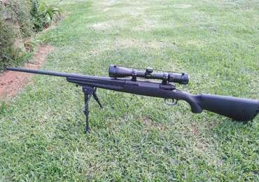 Best 308 rifles