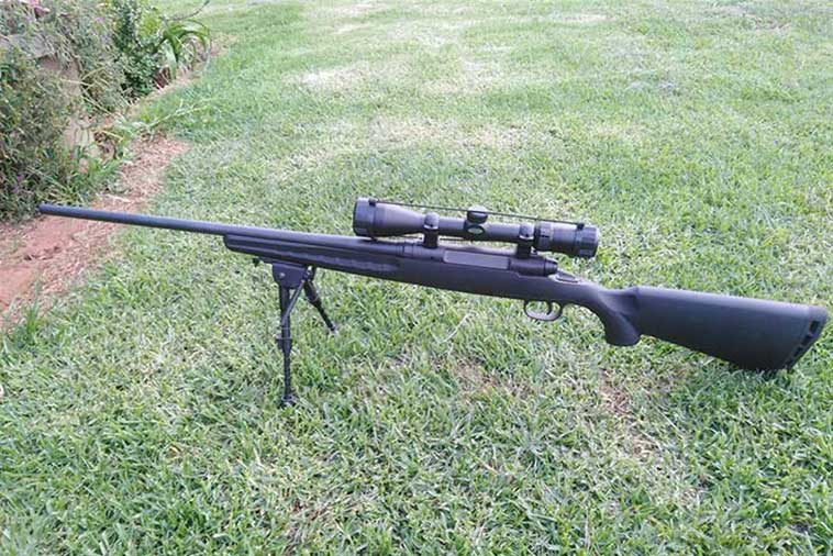 Best 308 rifles